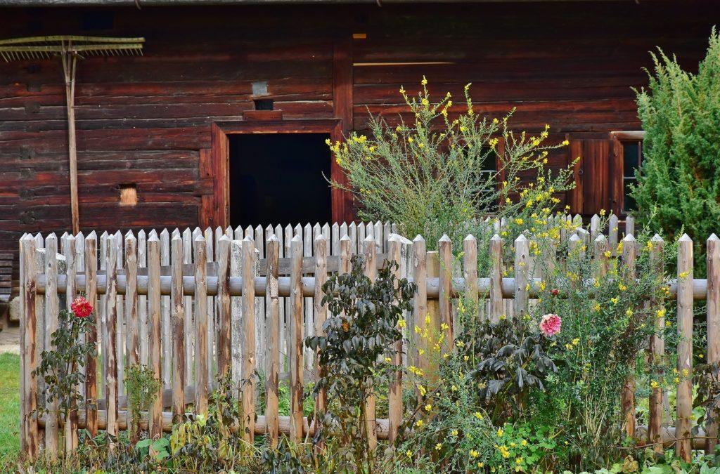 Cottage Garden 2914830 1920 1024x675, Best Garden, Home And DIY Tips