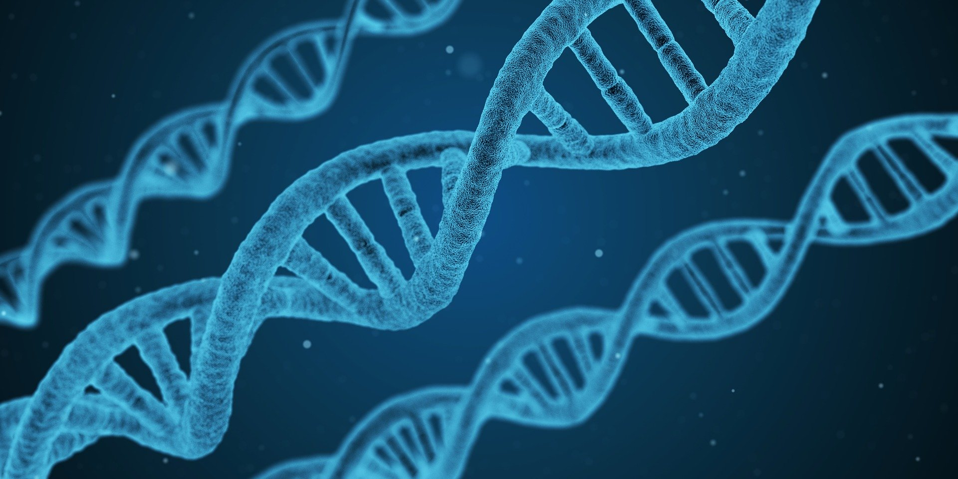 , Genetic engineering in plants: what exactly is it?, Best Garden, Home And DIY Tips