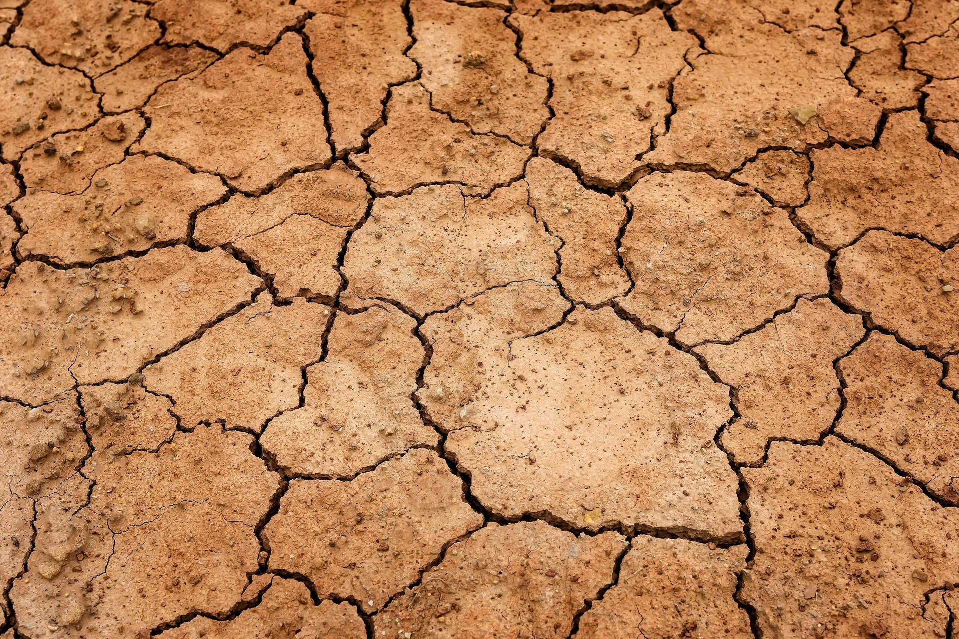 , Why the world is slowly drying up, Best Garden, Home And DIY Tips