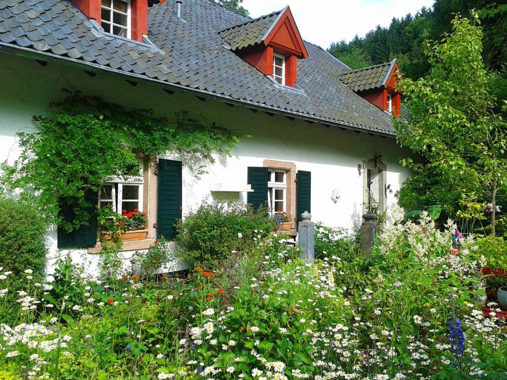 Garden 302259 1920 1024x768, Best Garden, Home And DIY Tips