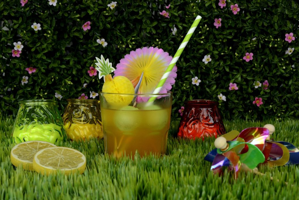Garden Party 1499061 1920 1024x683, Best Garden, Home And DIY Tips