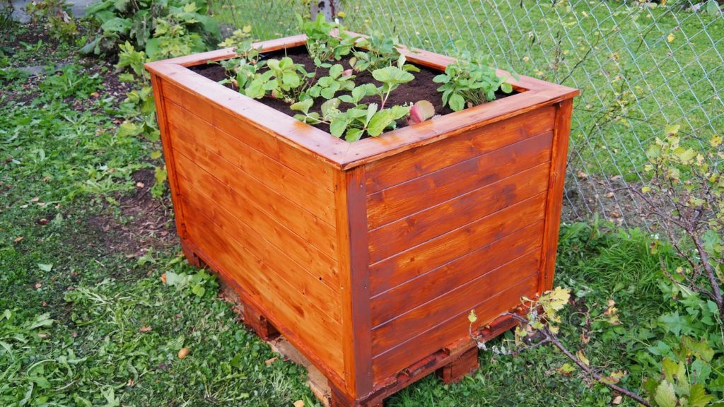Raised Bed 10 1024x576, Best Garden, Home And DIY Tips
