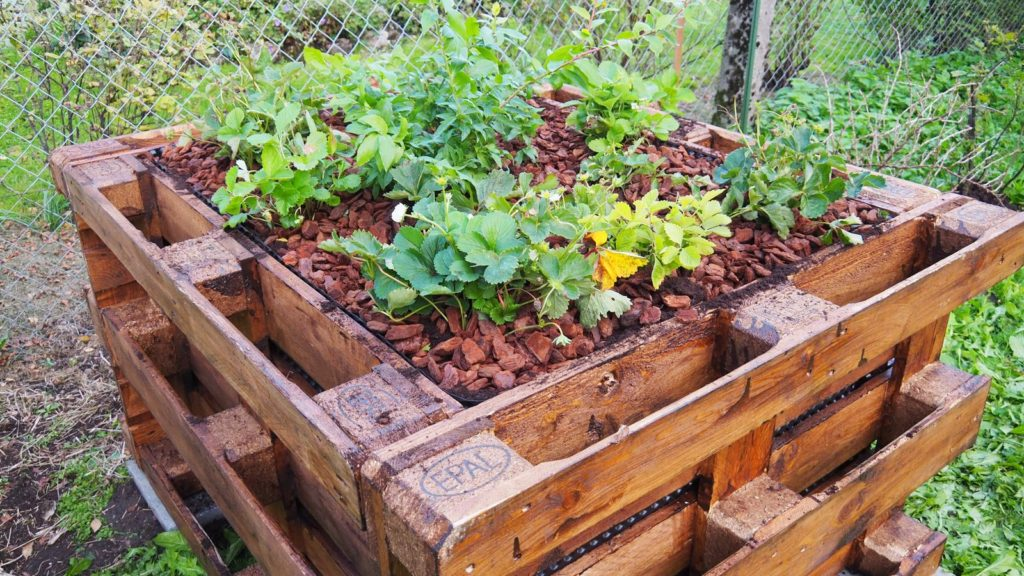 Raised Bed 9 1024x576, Best Garden, Home And DIY Tips