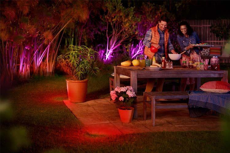 Smart Gardening 5, Best Garden, Home And DIY Tips