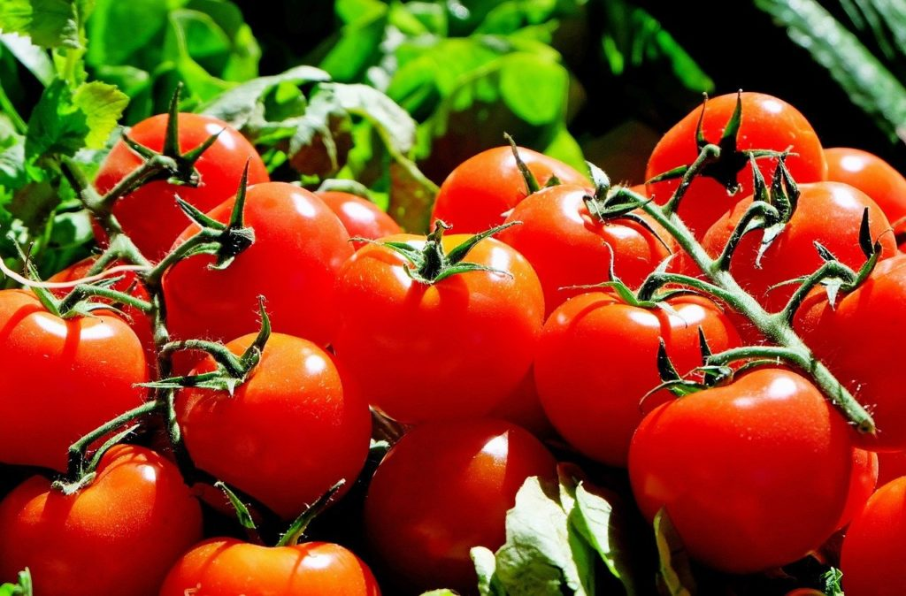 Tomatoes 1280859 1280 1 1024x674, Best Garden, Home And DIY Tips