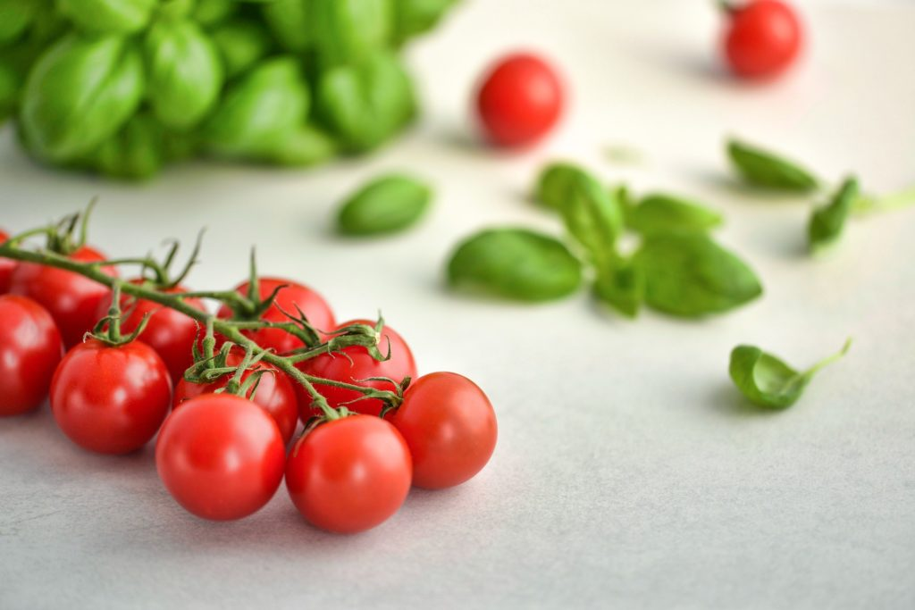 Tomatoes 3404263 1920 1024x683, Best Garden, Home And DIY Tips