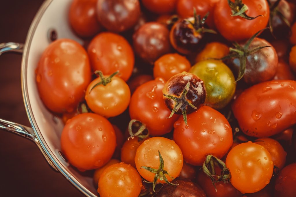 Tomatoes 3702962 1920 1024x683, Best Garden, Home And DIY Tips