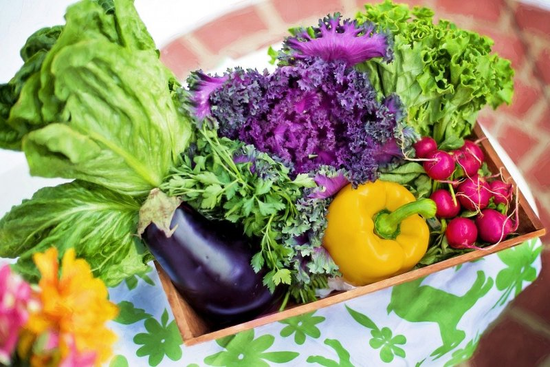 Balcony garden – tips for vegetables, herbs and Co.