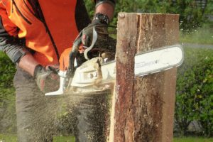 , The Ultimate Garden Chainsaws Comparison, Best Garden, Home And DIY Tips