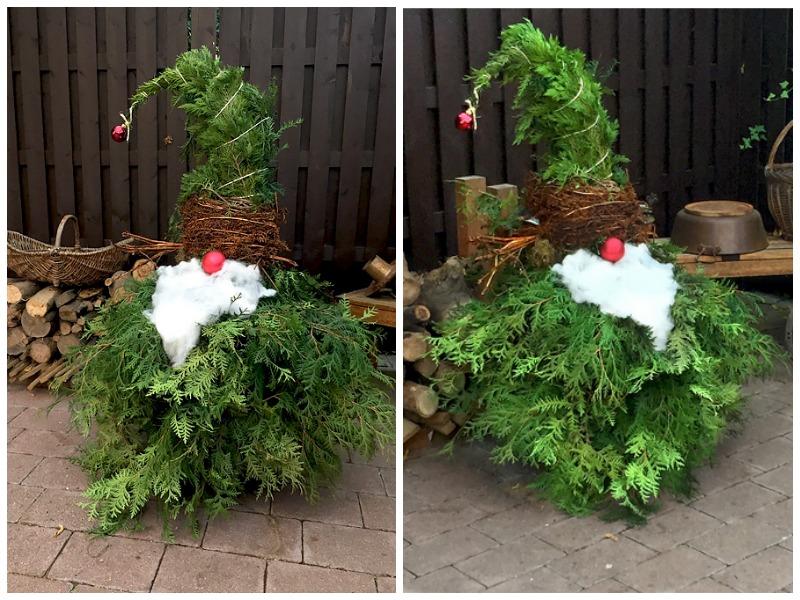 Juniper Gnomes, Best Garden, Home And DIY Tips