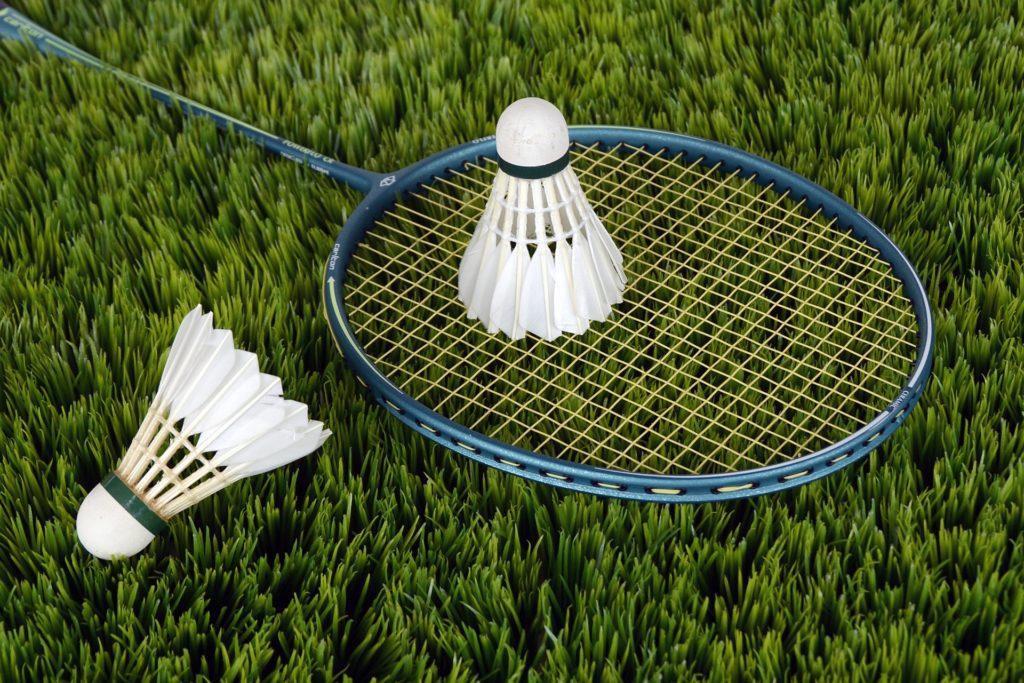 Badminton 1024x683, Best Garden, Home And DIY Tips