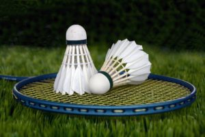 , Badminton In The Backyard, Best Garden, Home And DIY Tips