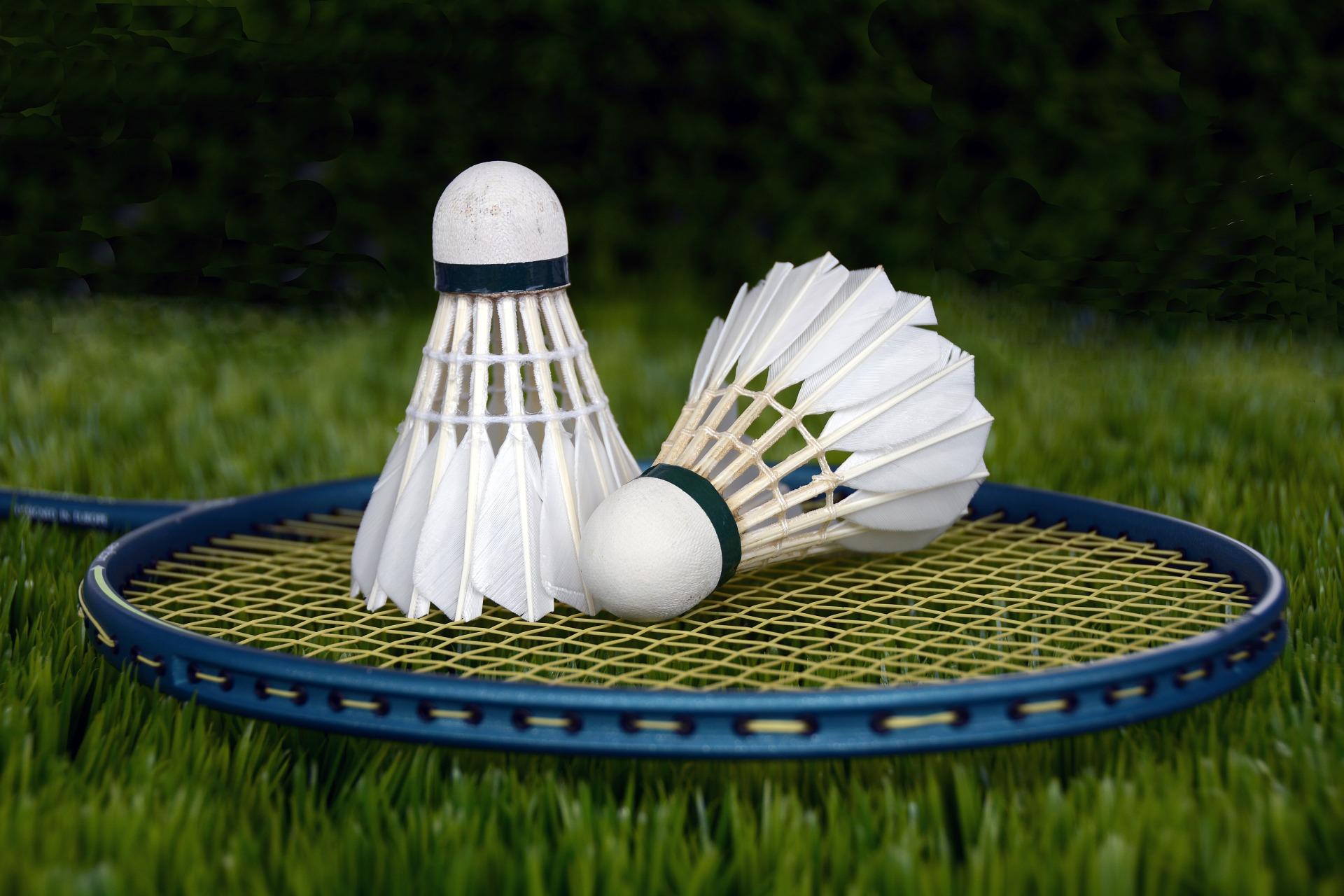 , Badminton In The Backyard, Best Garden, Home And DIY Tips