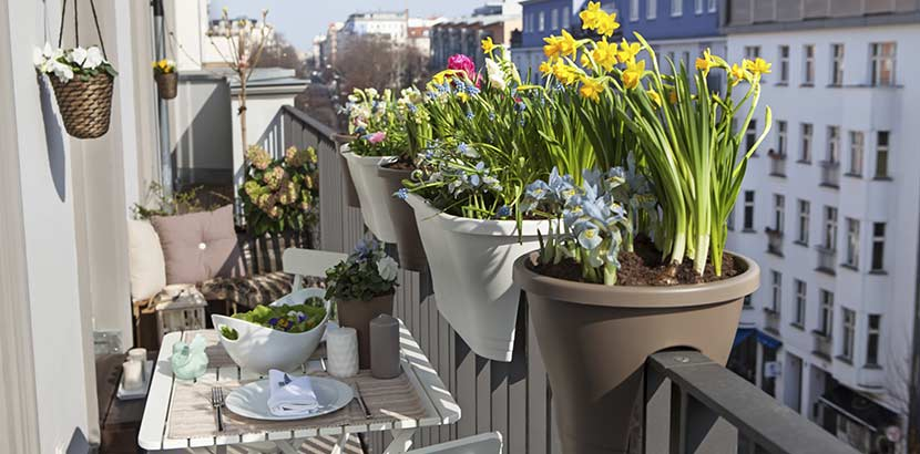 Balcony 5, Best Garden, Home And DIY Tips