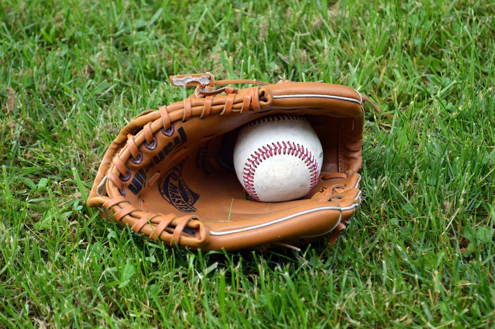 Read more about the article Baseball In The Backyard