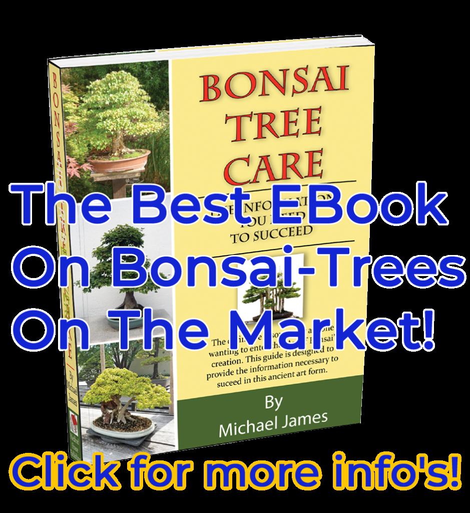 Bonsai Ebook 939x1024, Best Garden, Home And DIY Tips