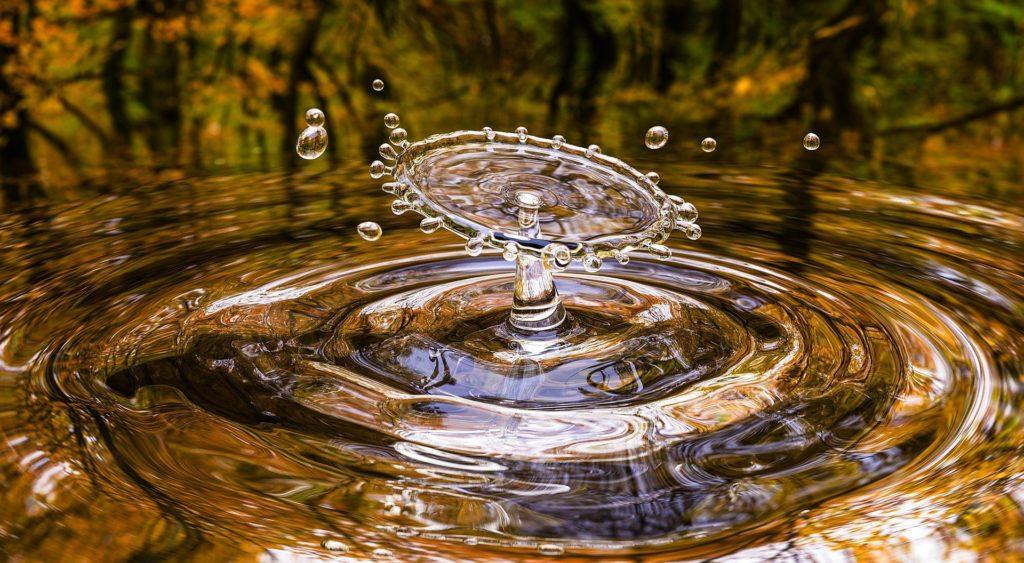 Drop 3698073 1920 1024x563, Best Garden, Home And DIY Tips