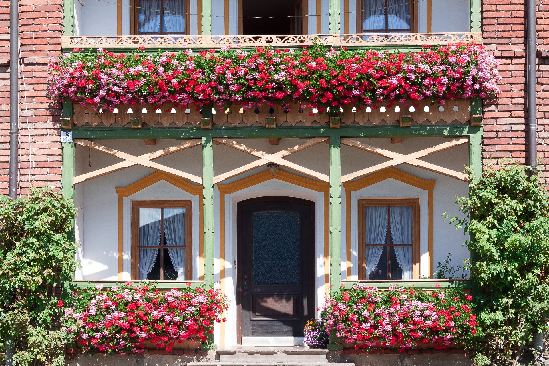 , BALCONY FLOWERS: PLANTING AND CARE TIPS, Best Garden, Home And DIY Tips