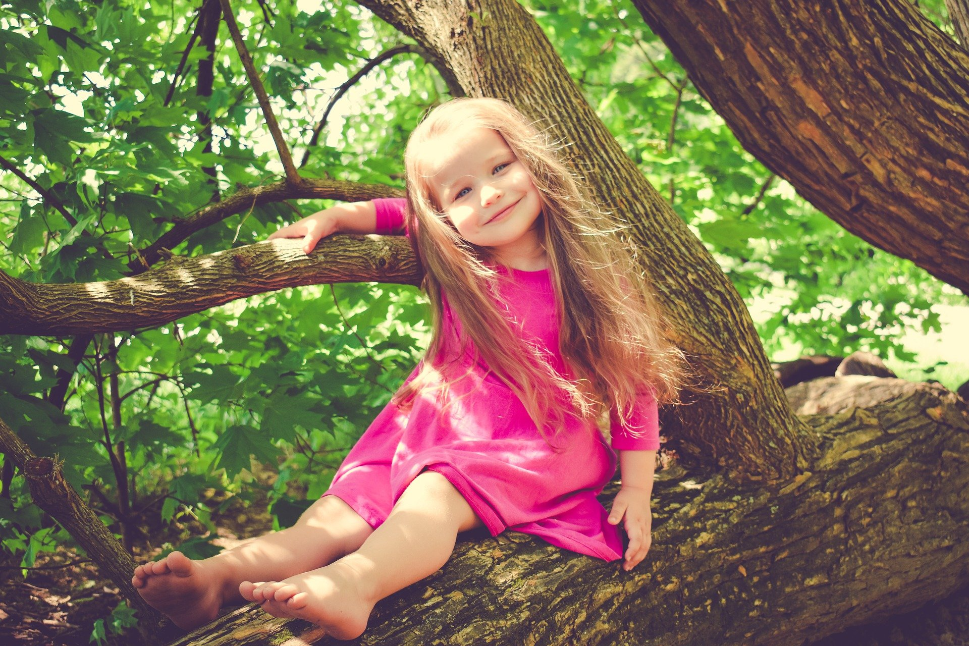 , Backyard Activities For Kids, Best Garden, Home And DIY Tips