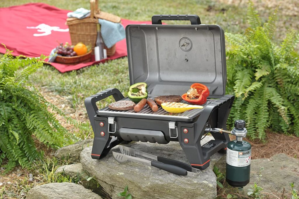 Grill 6 1024x681, Best Garden, Home And DIY Tips