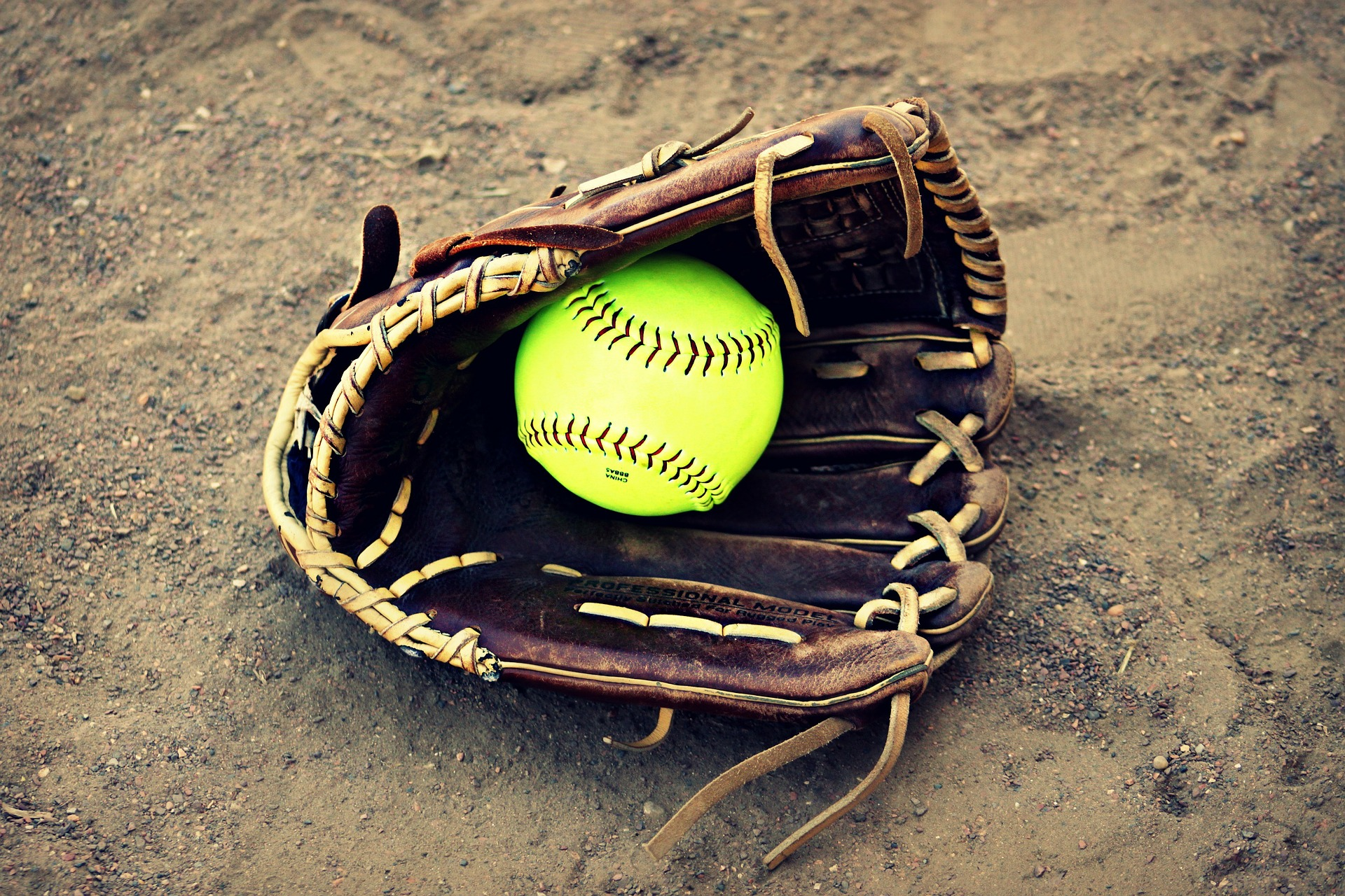 , Softball In The Backyard, Best Garden, Home And DIY Tips