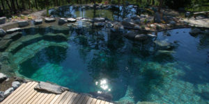 , Swimming pond planning: Pay attention to these points, Best Garden, Home And DIY Tips