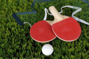 Table Tennis 300x200, Best Garden, Home And DIY Tips