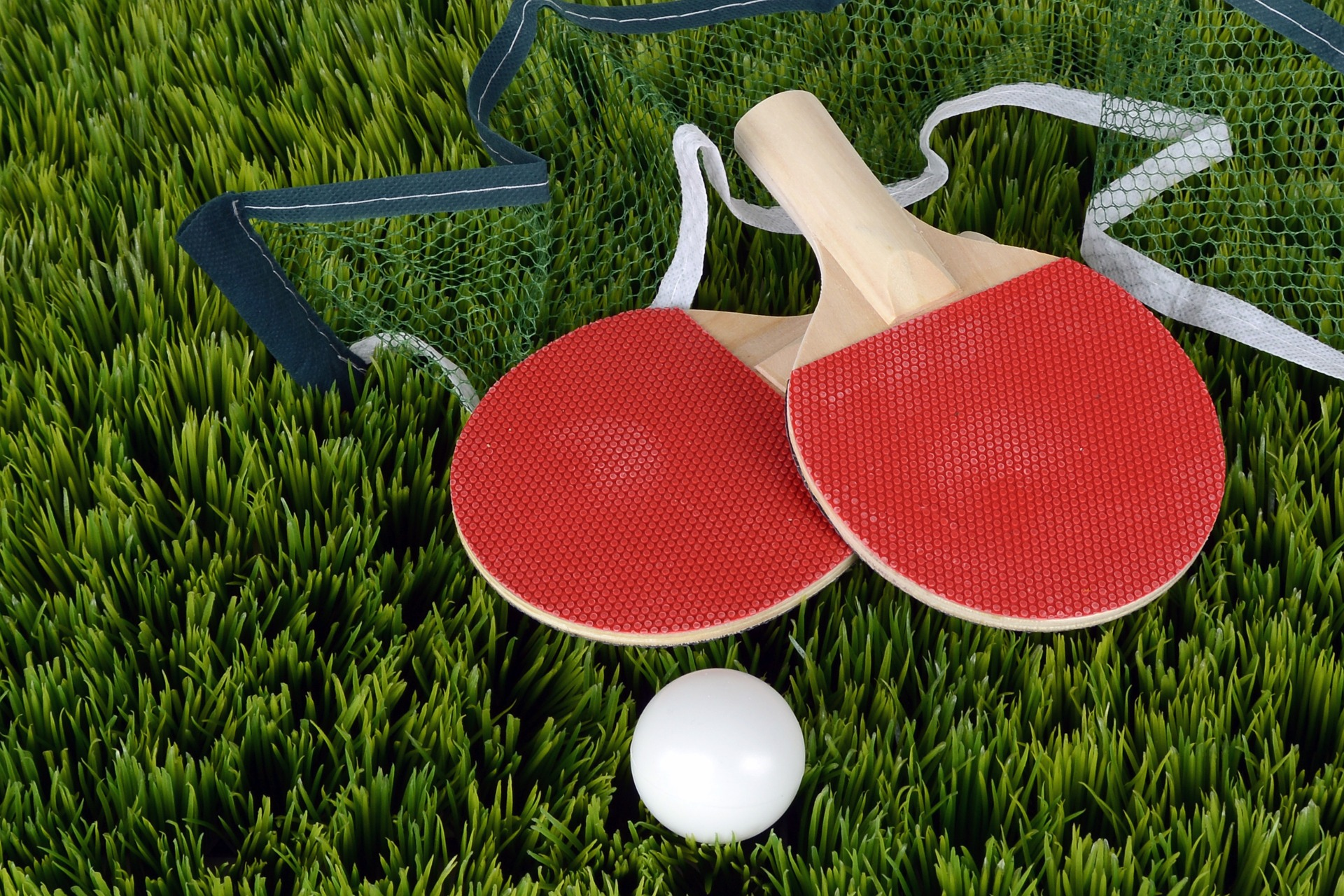 , Ping Pong in the Backyard, Best Garden, Home And DIY Tips
