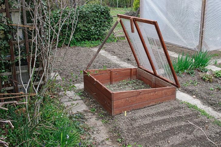 Gardening In Winter 2, Best Garden, Home And DIY Tips