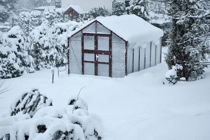 Gardening In Winter 3, Best Garden, Home And DIY Tips
