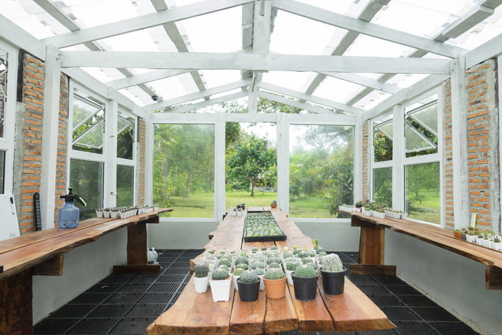 Gardening In Winter 4, Best Garden, Home And DIY Tips