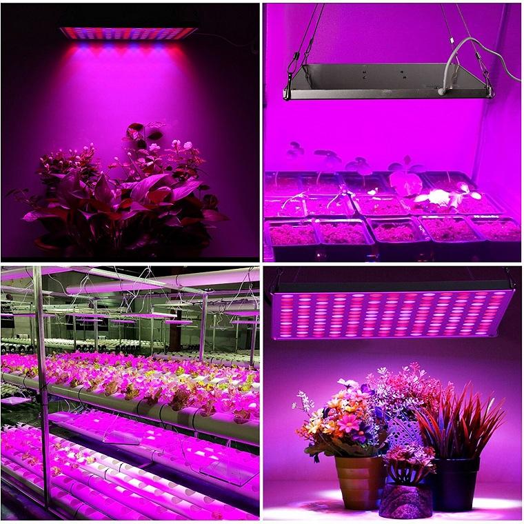 , LED Indoor Grow Lights: Best Lighting Option For Indoor Plants & Garden, Best Garden, Home And DIY Tips