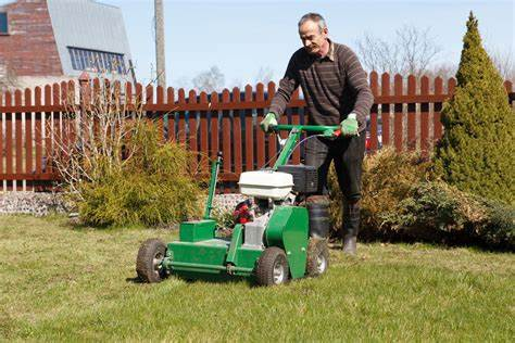 Lawn Aeration 2, Best Garden, Home And DIY Tips
