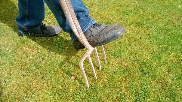 , How Often Lawn Aeration, Best Garden, Home And DIY Tips
