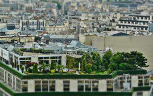 , Urban Gardening, Best Garden, Home And DIY Tips