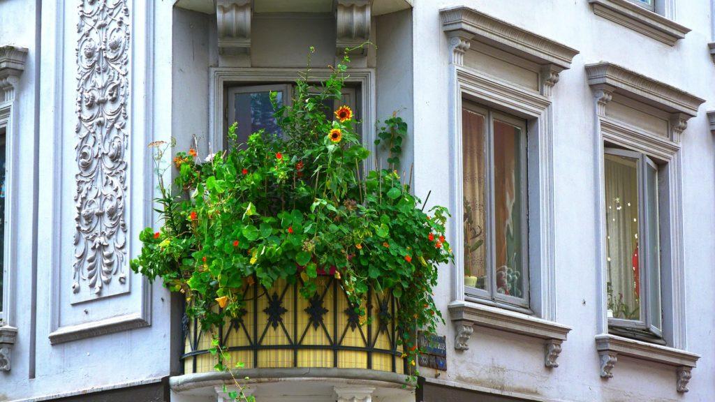Balcony 180901 1920 1024x576, Best Garden, Home And DIY Tips