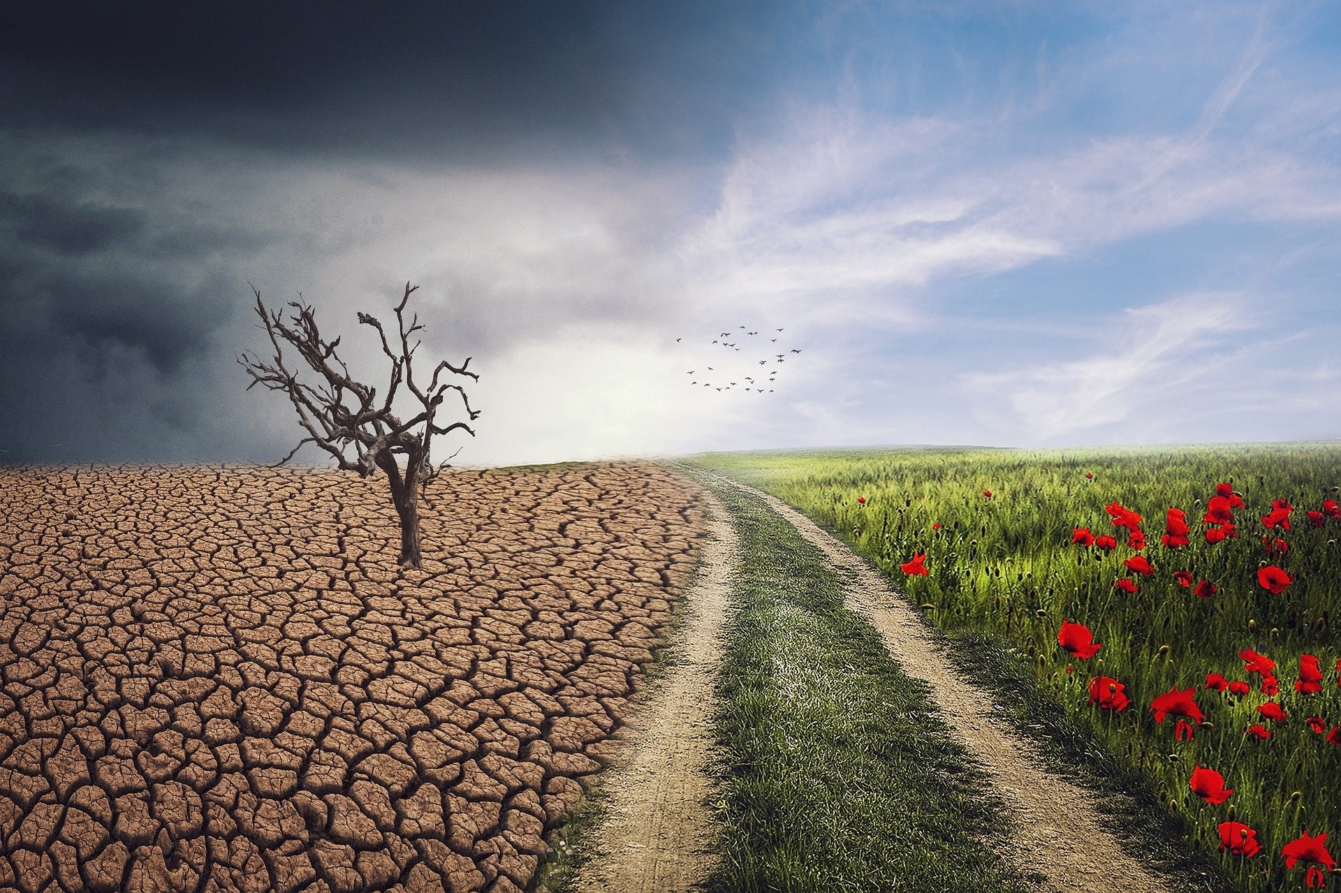 Read more about the article Six tips for better climate communication
