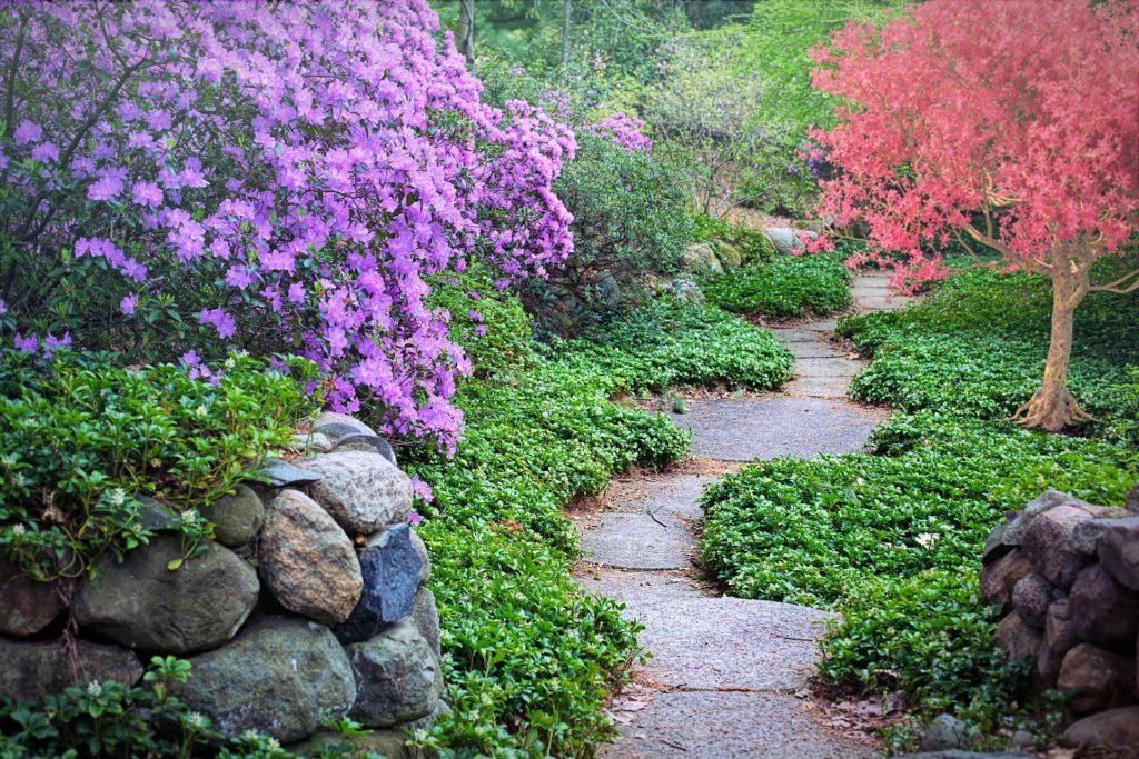 Garden Path 1024x683, Best Garden, Home And DIY Tips