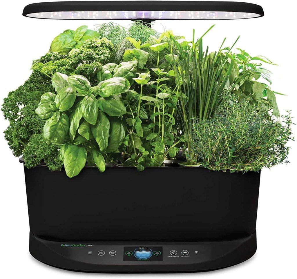 Grow Light 3 1024x962, Best Garden, Home And DIY Tips