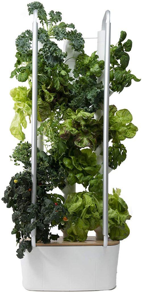 Grow Light 5 500x1024, Best Garden, Home And DIY Tips