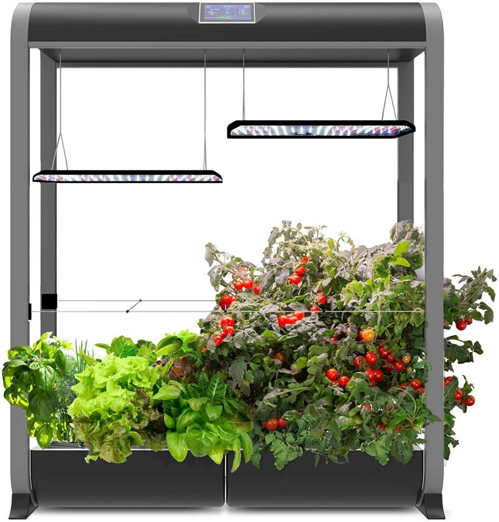 Grow Light 6 979x1024, Best Garden, Home And DIY Tips