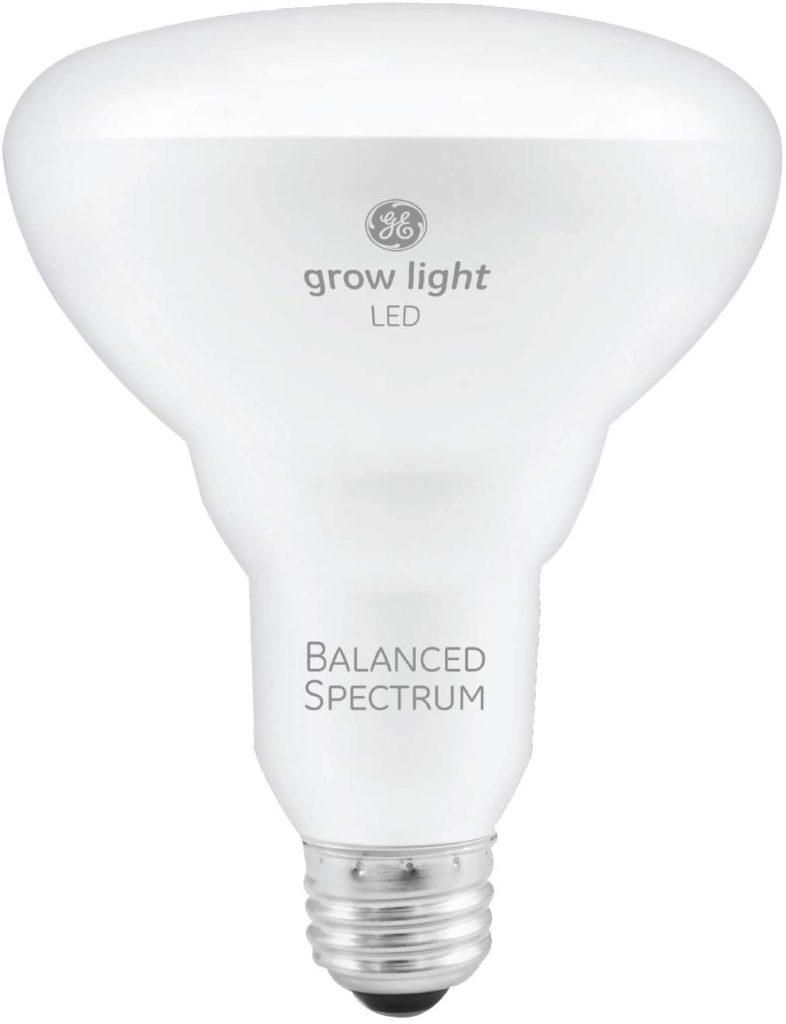 Grow Light 8 786x1024, Best Garden, Home And DIY Tips