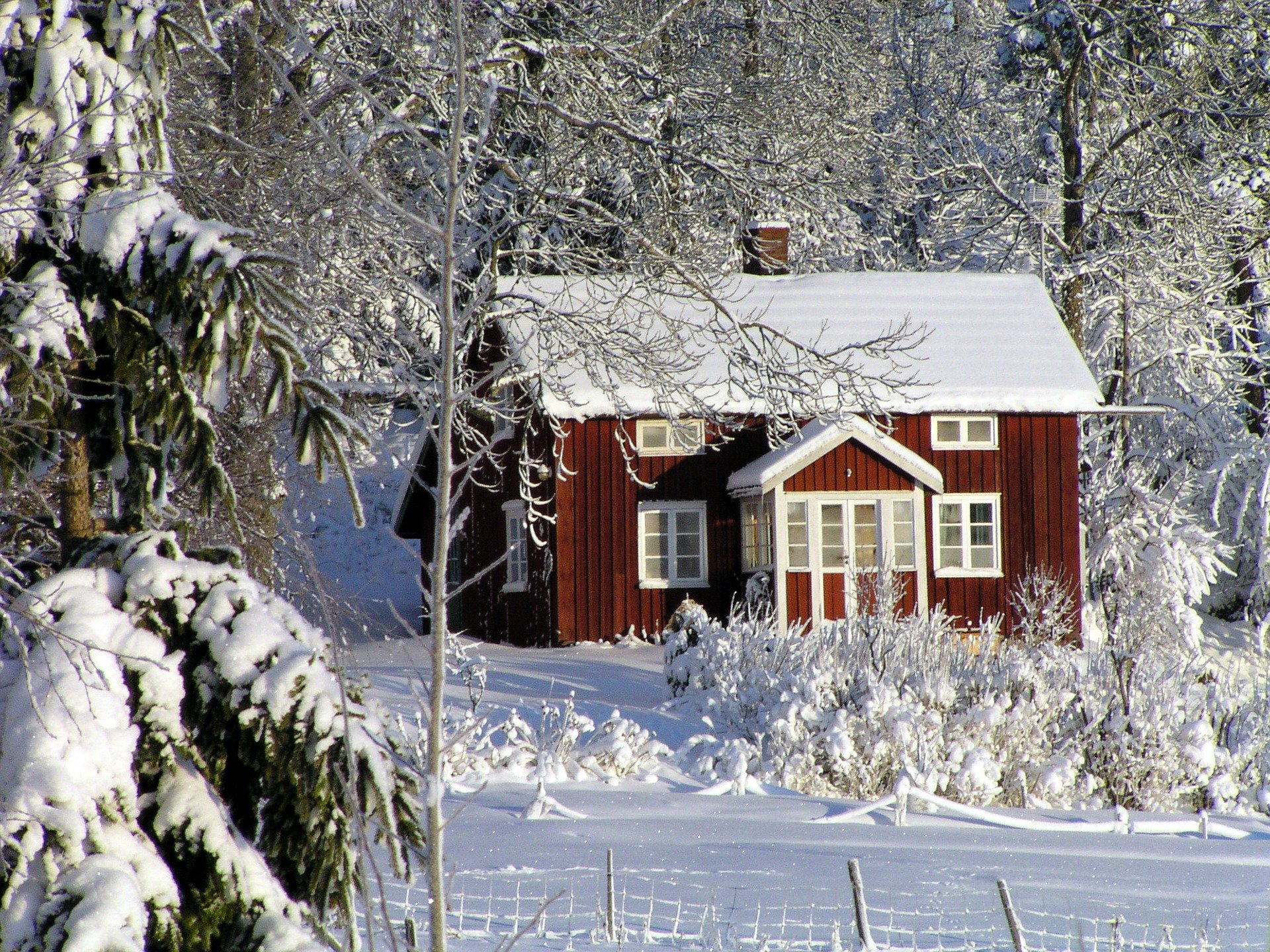 , 4 Garden Projects For Winter, Best Garden, Home And DIY Tips