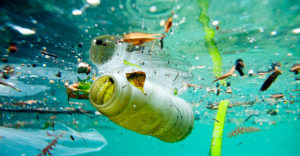 , How Does Plastic Get Into The Ocean, Best Garden, Home And DIY Tips