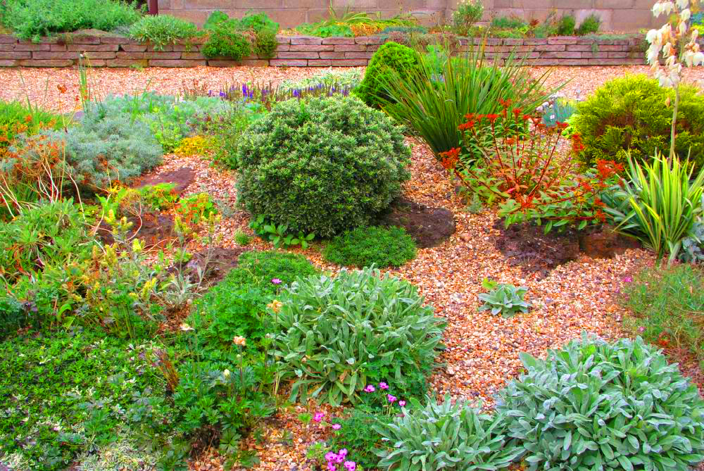 , Gravel garden: stones, grass and colorful flowers, Best Garden, Home And DIY Tips