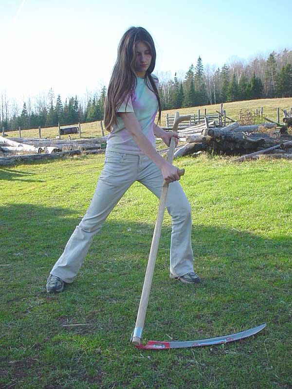 Lawn Scythe 2, Best Garden, Home And DIY Tips