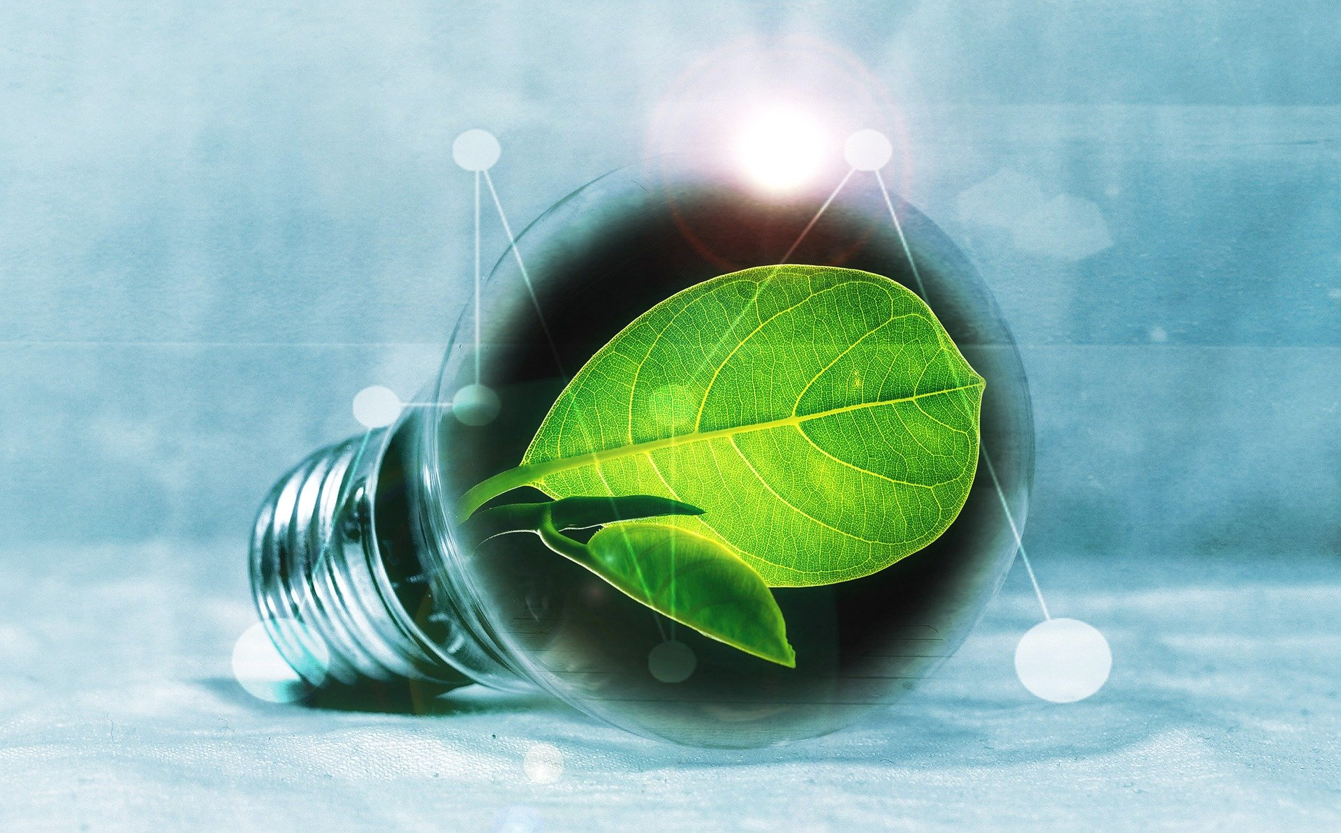 Green Electricity And Gas Suppliers In The USA