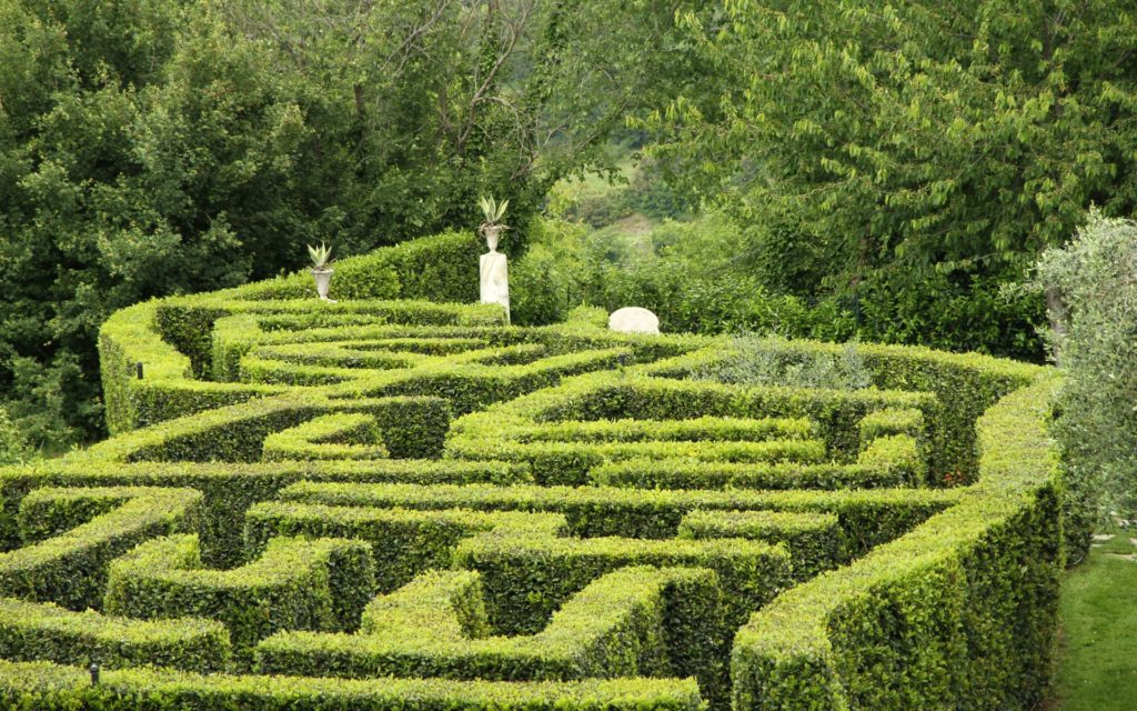Maze 3 1024x640, Best Garden, Home And DIY Tips