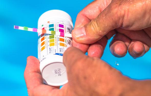 Pool Maintenance Checks, Best Garden, Home And DIY Tips