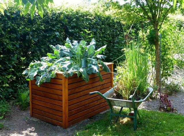 Raised Bett, Best Garden, Home And DIY Tips